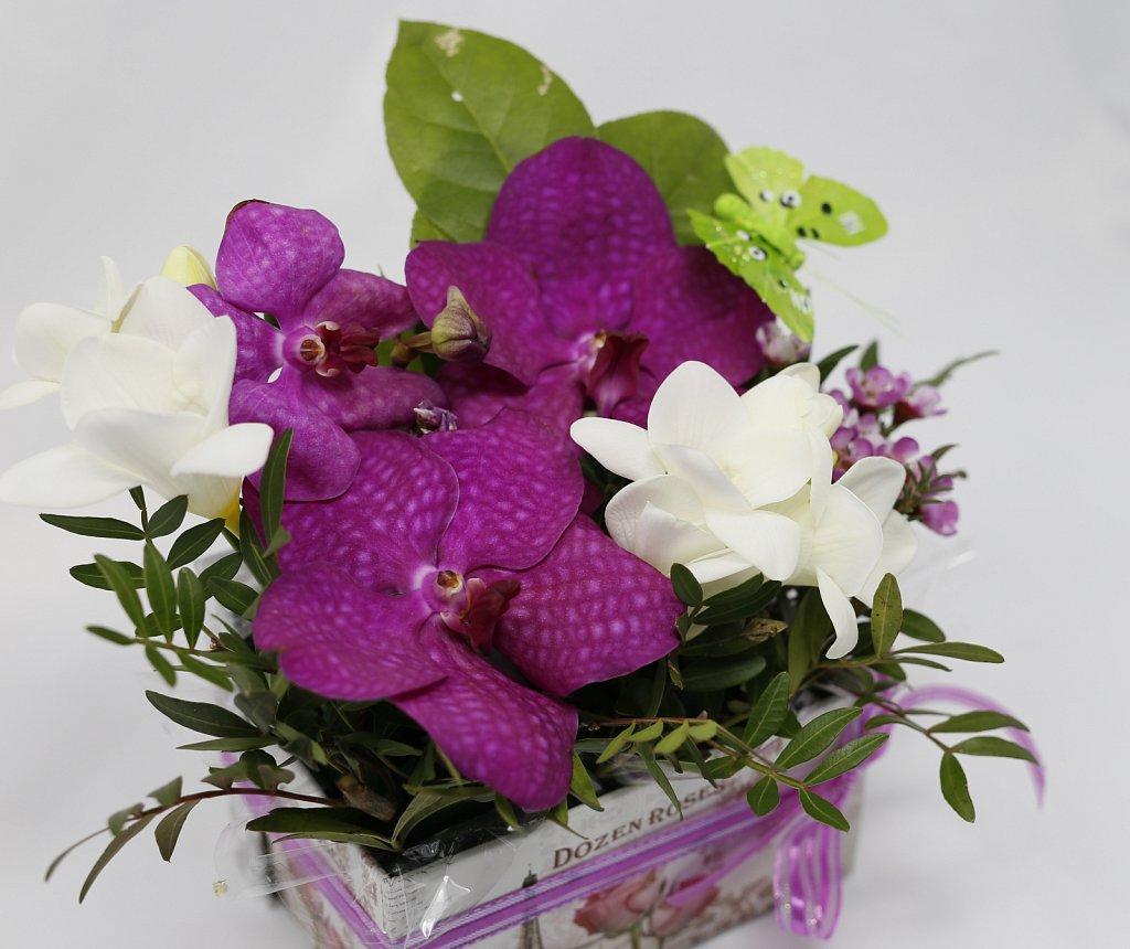 1-Cutie-Vanda-cu-orhidee4.jpg